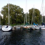 qcyc_marina